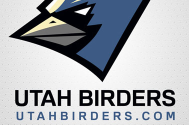 Utah Birds, Birding, and Birders Sticker